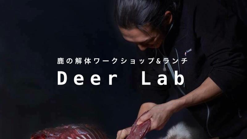 Deer Labo